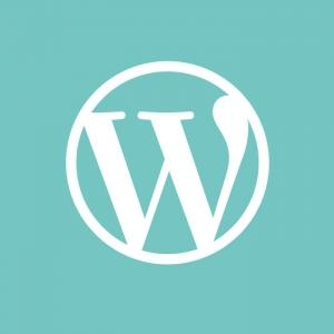 Thiết Kế Website Wordpress - Thiết Kế Website, Wordpress, Mã Nguồn Mở, Website Wordpress, Web Wordpress, SEO Wordpress
